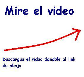 20101205022925-20101201222813-video-pinos.jpg