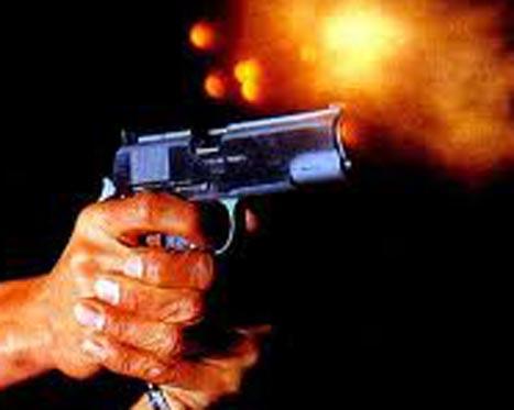 20101228202635-arma-de-fuego.jpg